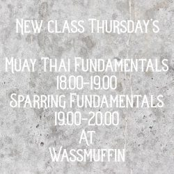 Muay Thai Fundamentals