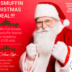 Wass'Muffin 3 MONTHS XMAS VOUCHER for £100 only!